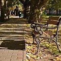 mam i ja swoją jesienną ławeczkę :) #jesień #ławka #październik #Lubsko