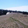 Hala Turbacz od Czoła Turbacza #góry #beskidy #gorce #HalaTurbacz #CzołoTurbacza #turbaczyk