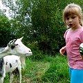 z zaprzyjaźnioną kozuchą :))) #NaWsi #kozy #zwierzęta #rodzina #Dominika #Chomiąża