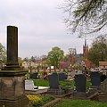 ... #cmentarz #WszystkichŚwiętych #ŚwiętoZmarłych #groby