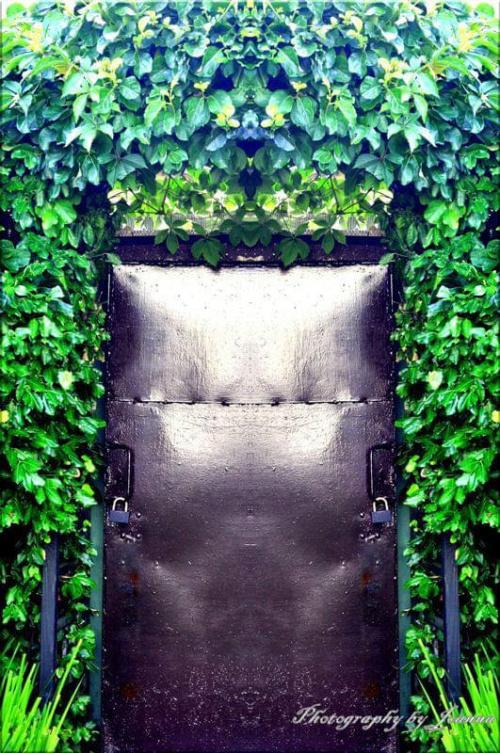 Czyżby drzwi do Raju?:)