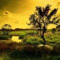 letni wieczór nad rzeczką #krajobraz #ZachodySłońca #rzeki #lato