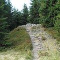Czoło Turbacza #góry #beskidy #gorce #turbacz #HalaDługa #HalaTurbacz #CzołoTurbacza #turbaczyk