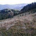 Polana Turbaczyk #góry #beskidy #gorce #turbacz #HalaDługa #HalaTurbacz #CzołoTurbacza #turbaczyk