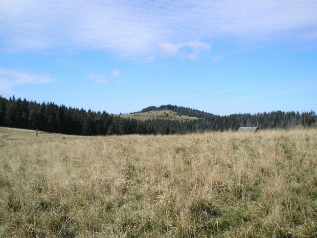 Czoło Turbacza z Hali Długiej #góry #beskidy #gorce #turbacz #HalaDługa #HalaTurbacz #CzołoTurbacza #turbaczyk