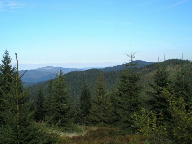 Mogielica i Kudłoń z Czoła Turbacza #góry #beskidy #gorce #turbacz #HalaDługa #HalaTurbacz #CzołoTurbacza #turbaczyk