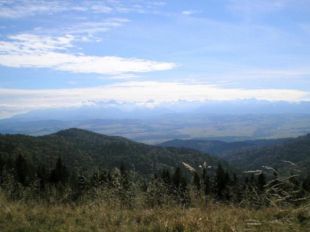 Tatry Wysokie z Hali Długiej #góry #beskidy #gorce #turbacz #HalaDługa #HalaTurbacz #CzołoTurbacza #turbaczyk