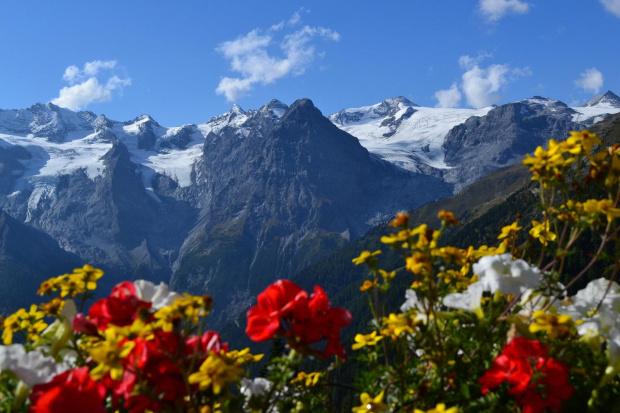 #Góry #PołudniowyTyrol #szarotka #Trafoi #Włochy