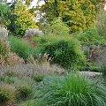 ogród traw w Radkowie #grochowscy #radków #TrawyOzdobne
