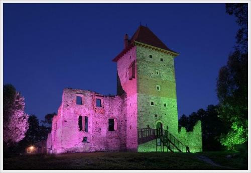 Dedykacja dla Krzysia - krfkoza. Z nocnego grasowania :) Zamek w Chudowie :)) #zamek #Chudów