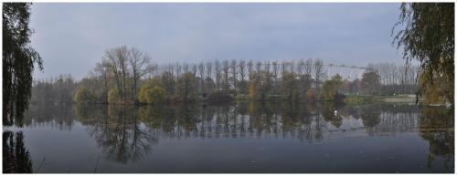 Stadion Śląski #woda #staw #park #drzewa #stadion #wpkiw