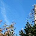 na szlaku, na Śnieżkę (04.10.2011) #góry #jesień #Karkonosze #Karpacz