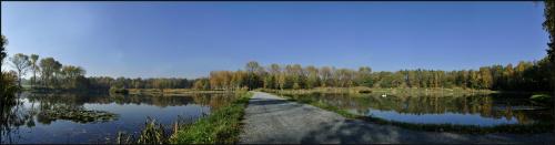 #panorama #staw #park #rzęsa