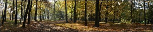 #panorama #park #jesień #liście