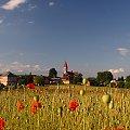 #maki #kościół #Pstrążna #pole #niebo #zabudowania