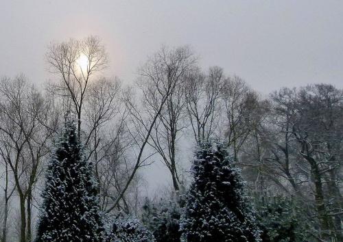 zimnoooo !!!! #mróz #śnieg #zima