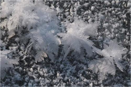 zimnoooo !!! **** ulub. ewawardzala; amyw **** #mróz #śnieg #zima