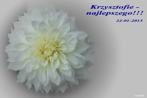 Dla Krzysztofa50 - samych nominacji do 'najlepszych' !!! #życzenia #urodziny