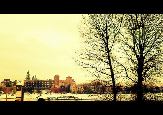 Wawel z okien autobusu