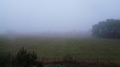 Jesienne mgły. #krajibraz