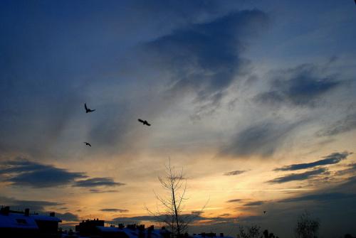 Zachodnie niebo dzisiaj
