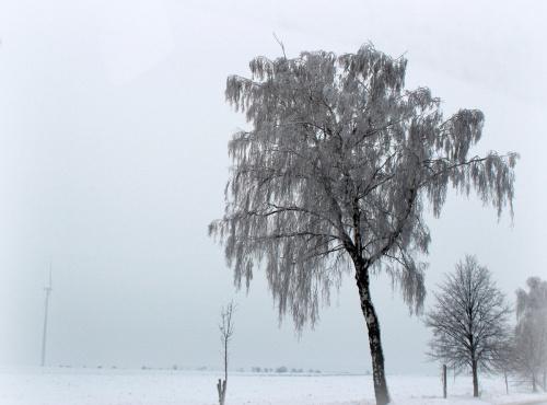 wczoraj byłam na wsi i tak było po drodze ... **** ulub. giga-grzmot **** #Chomiąża #śnieg #wieś #zaspy #zima