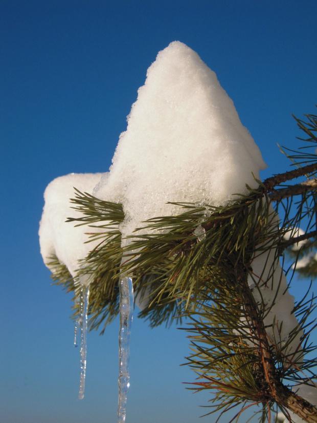 #lód #Lublin #mróz #śnieg #Zima