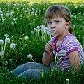latem ... na łące ... :)) **** ulub. lissa **** #Chomiąża #dmuchawce #Dominika #dzieci #lato #łąka #wieś