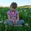 latem ... na łące ... :)) #Chomiąża #dmuchawce #Dominika #dzieci #lato #łąka #wieś