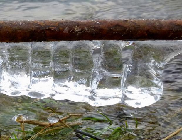 nad rzeką Opavą ... #Chomiąża #NadRzeką #Opava #sople #zima