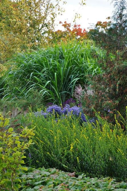 ogród w Radkowie #OgródRadków