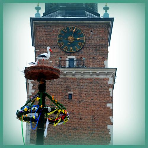 Poniedziałek Wielkanocny na Krakowskim Rynku