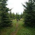#góry #Karkonosze #Izery