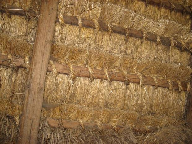 Zagroda Guciów, w stodole - widok wiązania strzechy, 5 05 2013 #Guciów #strzecha