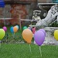 #baloniki #Brody