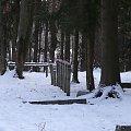 Dawny Cmentarz Ewangelicki w Karwiku #Karwik