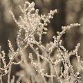 #luty #zima