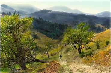 wędrówką życie jest człowieka.... #góry #jesień