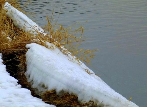 Kłodnica odmarzła ... #Kłodnica #rzeka #zima